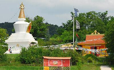 Kövi Szabolcs koncertje Taron, a Buddha Park erdei színpadán